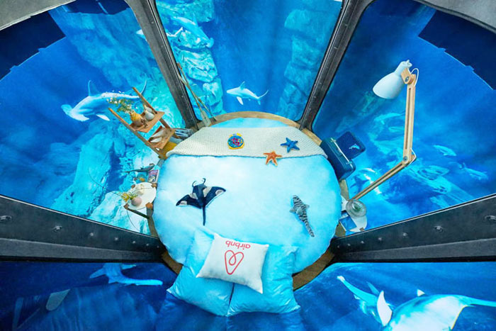 02-airbnb-leva-voce-para-se-hospedar-em-quarto-de-vidro-no-aquario-de-paris