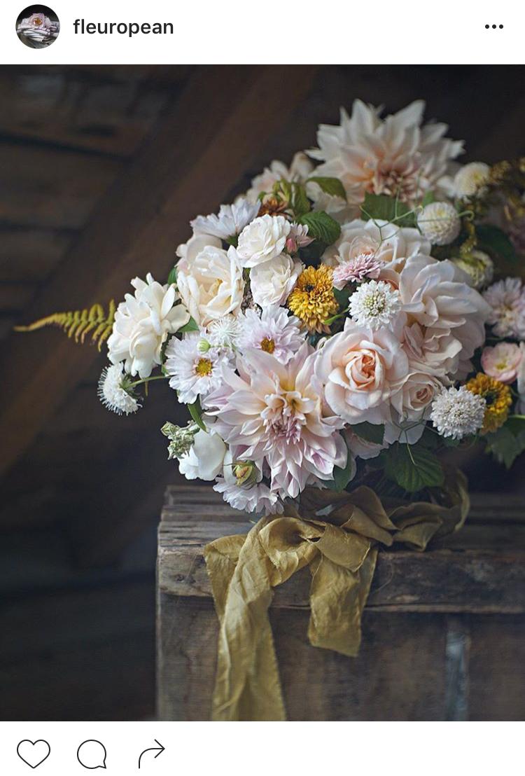 02-perfis-do-instagram-que-amam-flores-plantas-para-voce-seguir