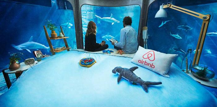 03-airbnb-leva-voce-para-se-hospedar-em-quarto-de-vidro-no-aquario-de-paris