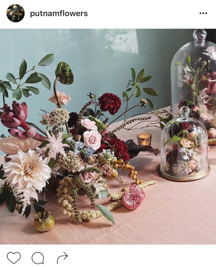 05-perfis-do-instagram-que-amam-flores-plantas-para-voce-seguir