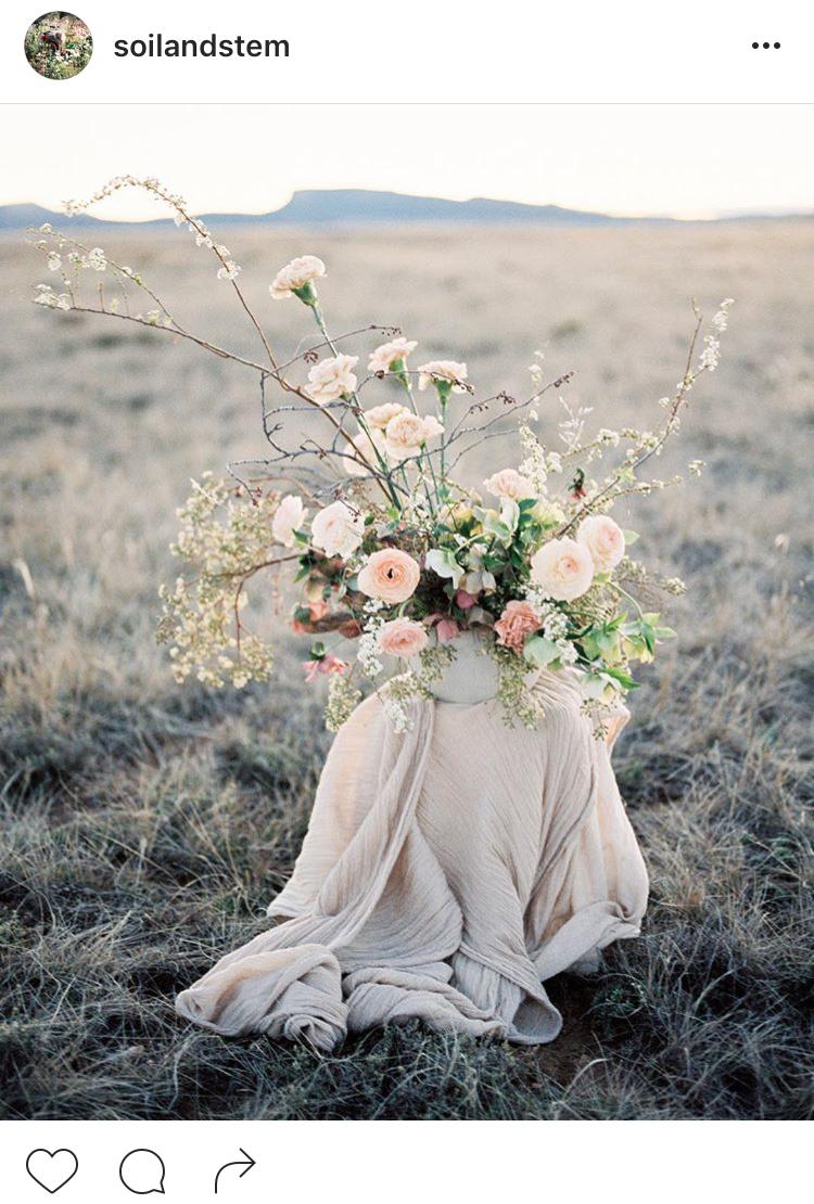 06-perfis-do-instagram-que-amam-flores-plantas-para-voce-seguir