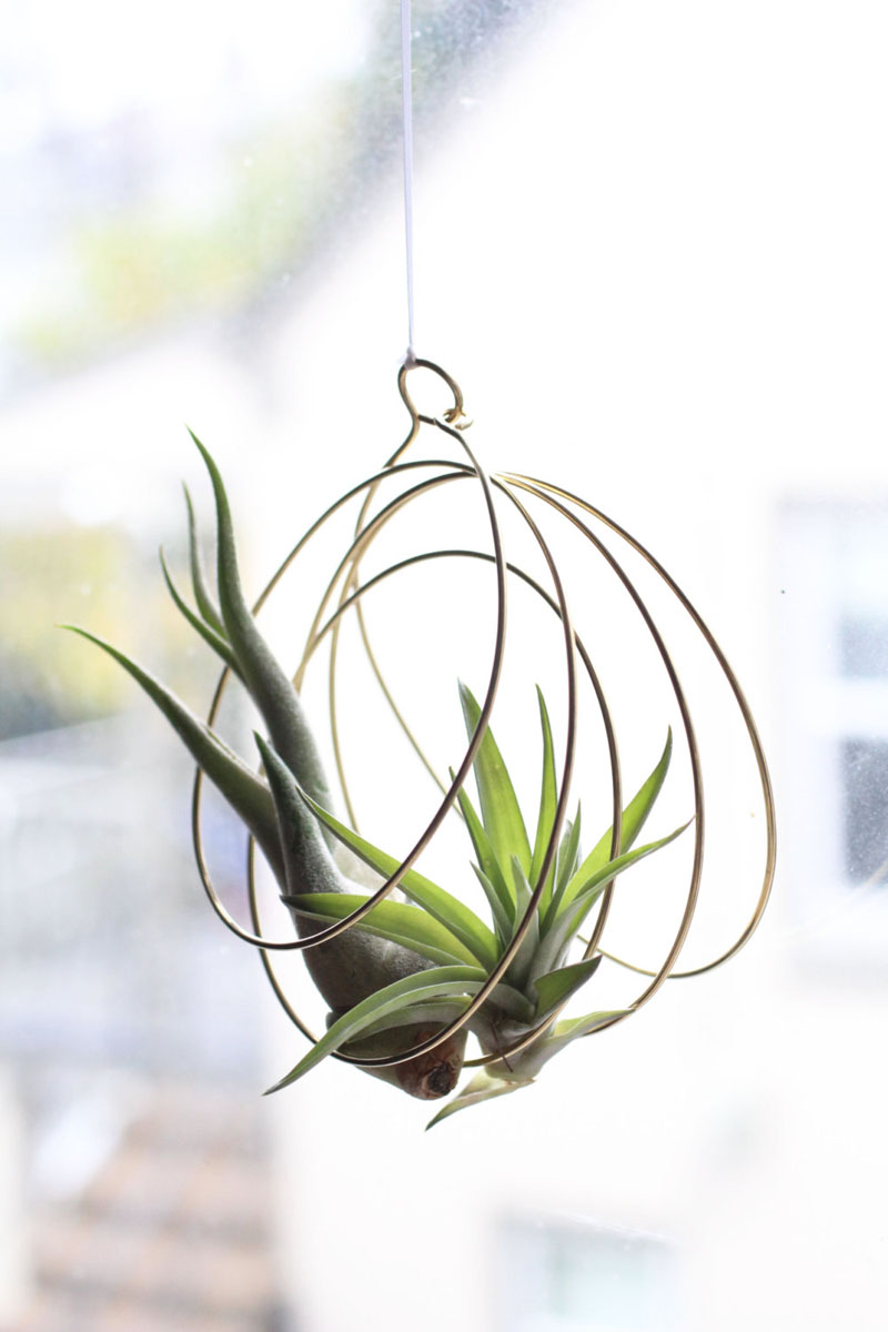 11-airplants-como-usar