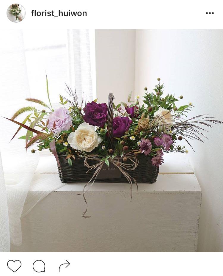 11-perfis-do-instagram-que-amam-flores-plantas-para-voce-seguir