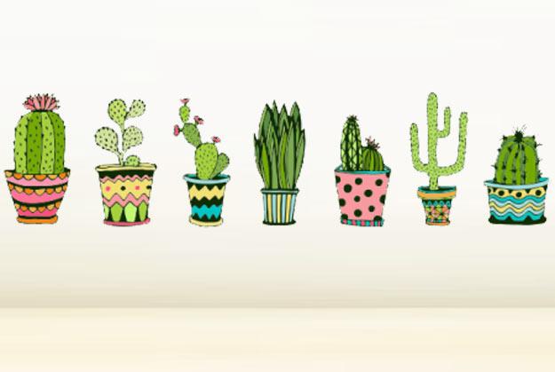 13-cactos-decoracao-produtos