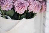13-perfis-do-instagram-que-amam-flores-plantas-para-voce-seguir