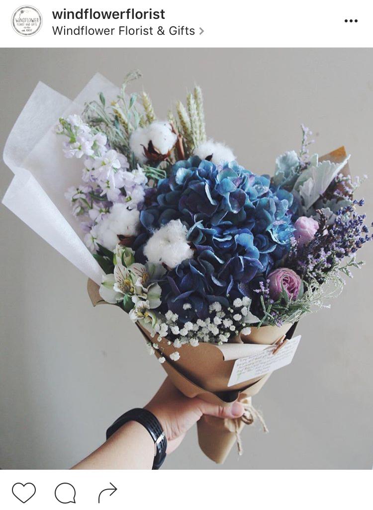17-perfis-do-instagram-que-amam-flores-plantas-para-voce-seguir