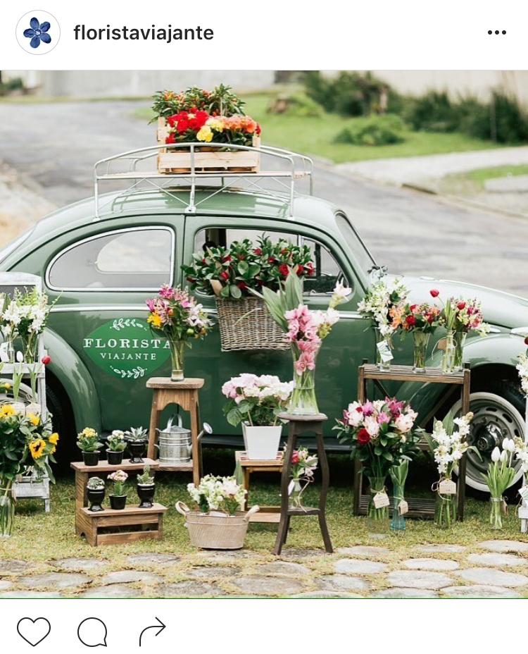 18-perfis-do-instagram-que-amam-flores-plantas-para-voce-seguir