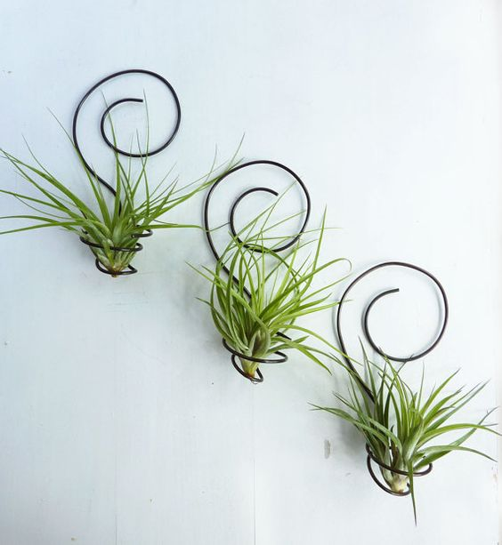 2-2-airplants-como-usar