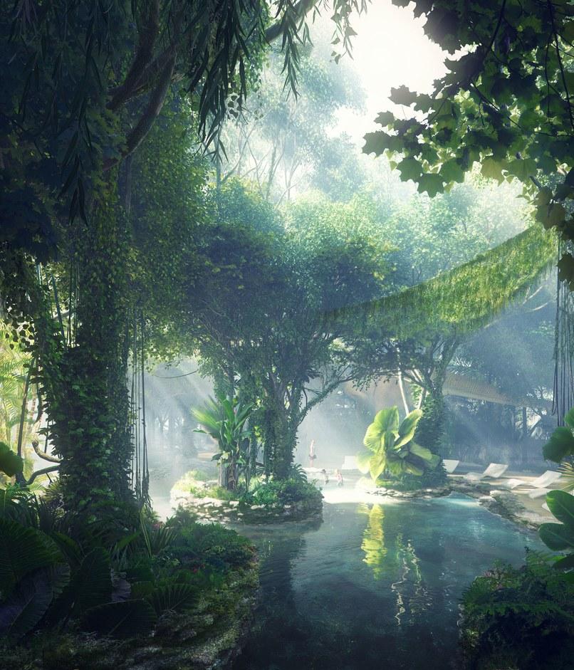 2-dubai-abrigara-a-primeira-floresta-tropical-do-oriente-medio