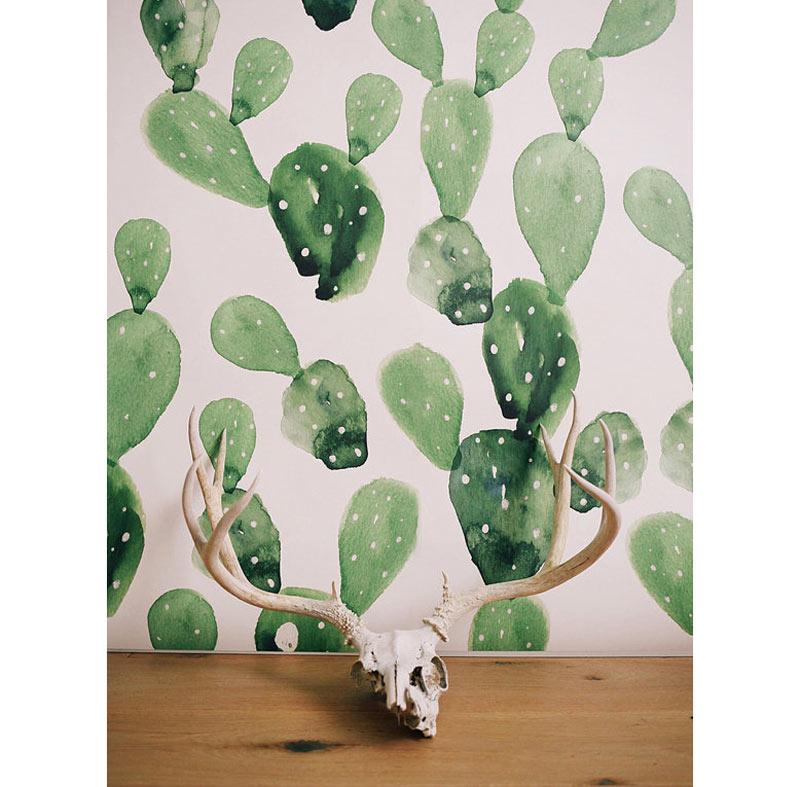 20-cactos-decoracao-produtos