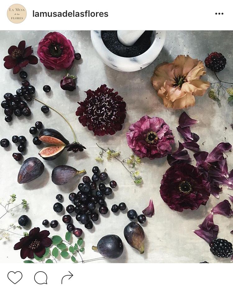 20-perfis-do-instagram-que-amam-flores-plantas-para-voce-seguir
