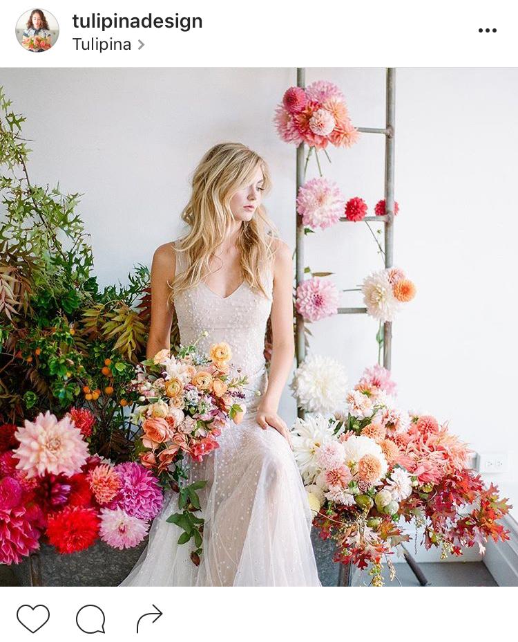 21-perfis-do-instagram-que-amam-flores-plantas-para-voce-seguir