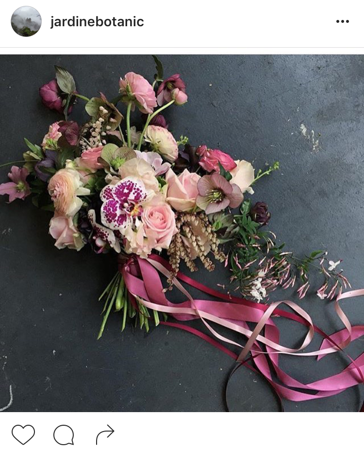 24-perfis-do-instagram-que-amam-flores-plantas-para-voce-seguir