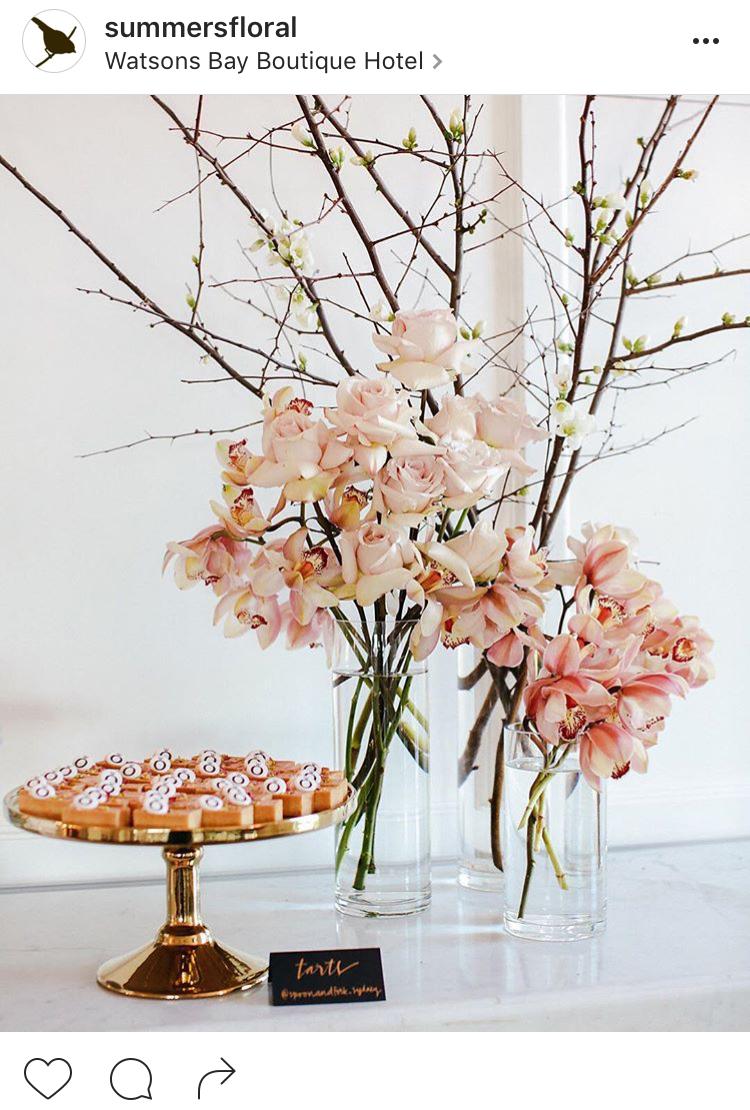 26-perfis-do-instagram-que-amam-flores-plantas-para-voce-seguir