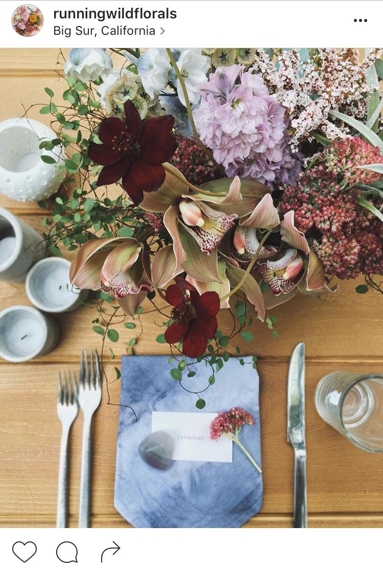28-perfis-do-instagram-que-amam-flores-plantas-para-voce-seguir