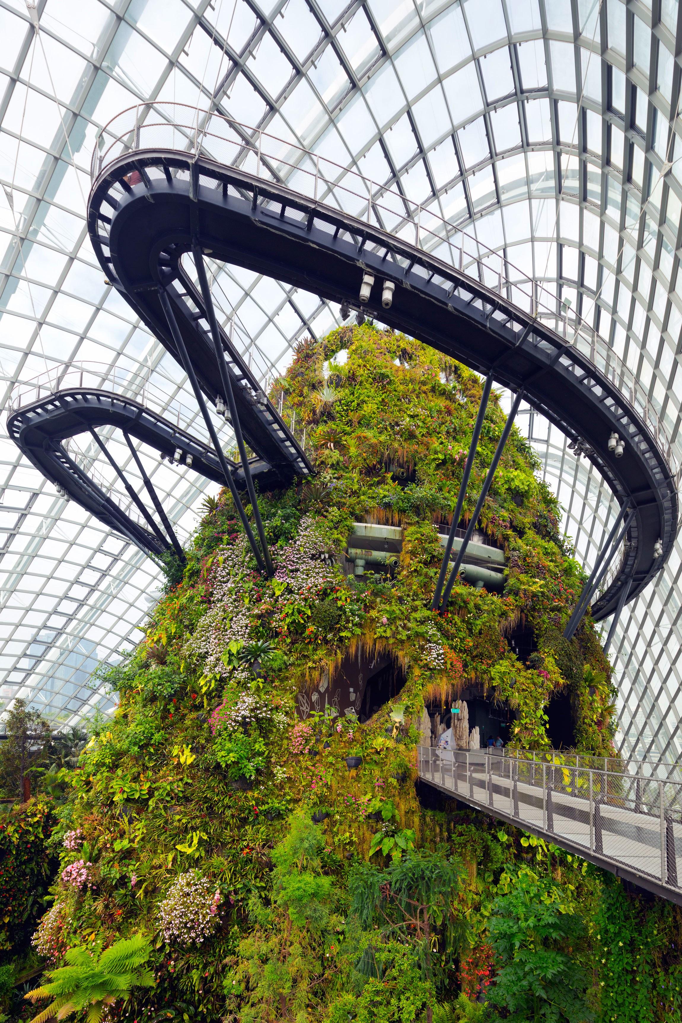 5-jardim-botânico-de-cingapura