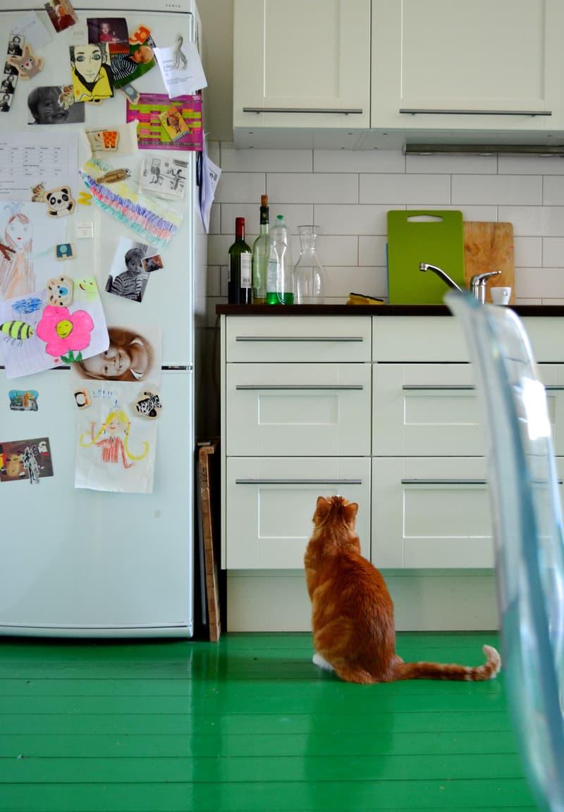 cozinha-branca-com-piso-verde-brilhante