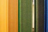 BAU-2013-portas-coloridas,-portões-automáticos-e-madeiras-plásticas-em-evidencia