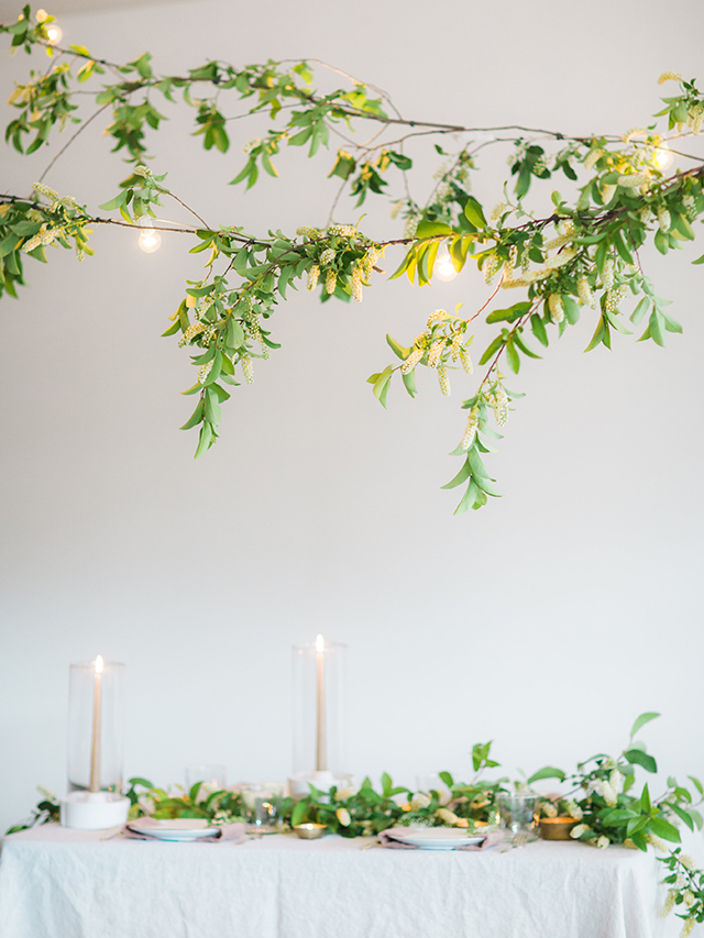 diy-string-lights-green-foliage-005