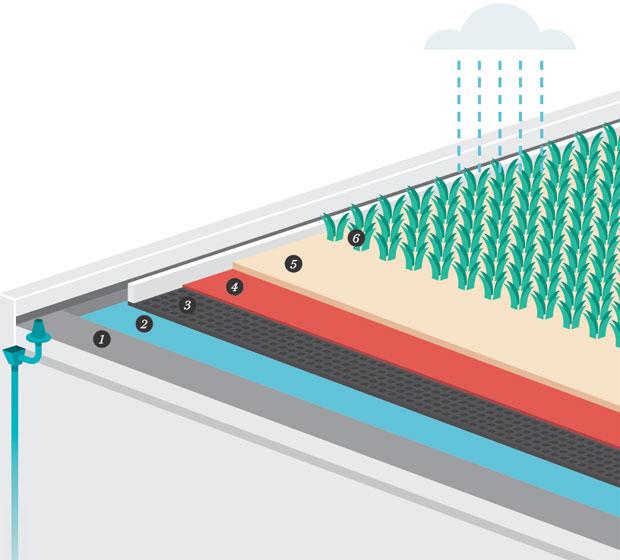 dossie-telhados-como-ter-uma-cobertura-verde