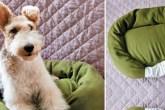 f-como-fazer-uma-cama-para-cachorro-usando-moletom-velho