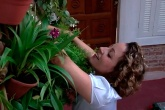 minhas-plantas-jardim-vertical-baratinho