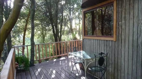 size_590_16_9_mushroom-dome-cabin-airbnb (1)