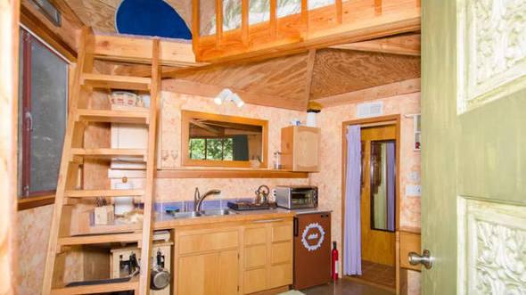 size_590_16_9_mushroom-dome-cabin-airbnb