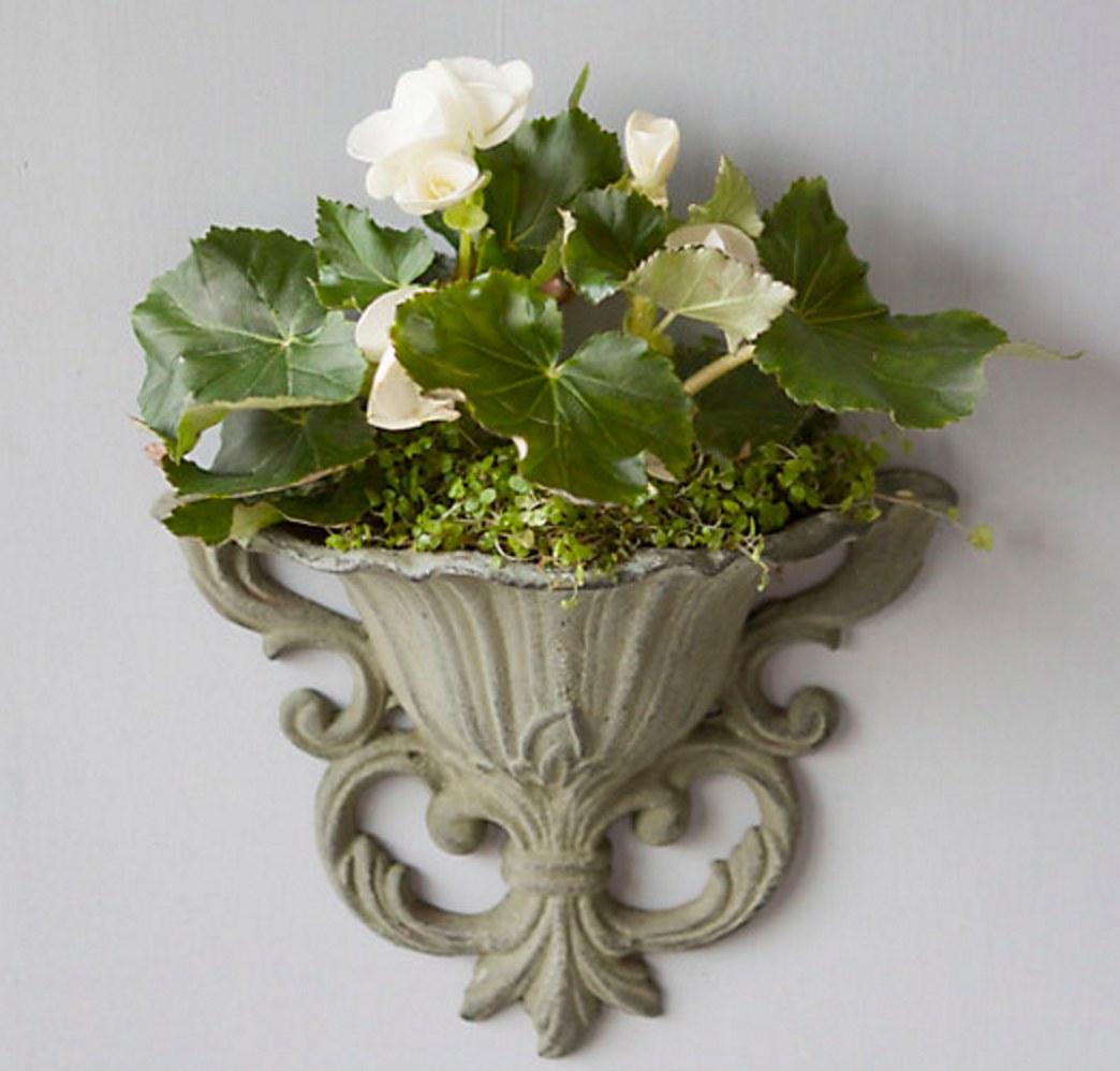 vaso-de-parede-classico-flor-de-lis