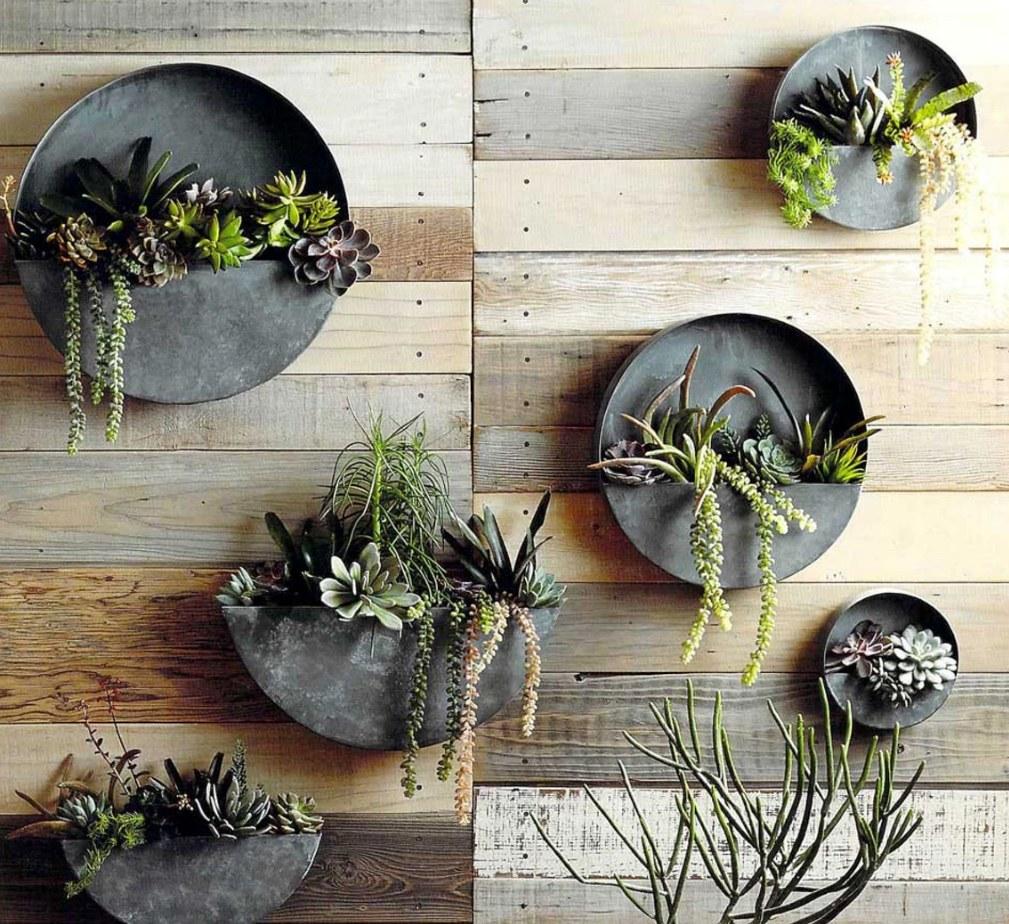 vasos-de-parede-circulares-de-metal-para-terrario