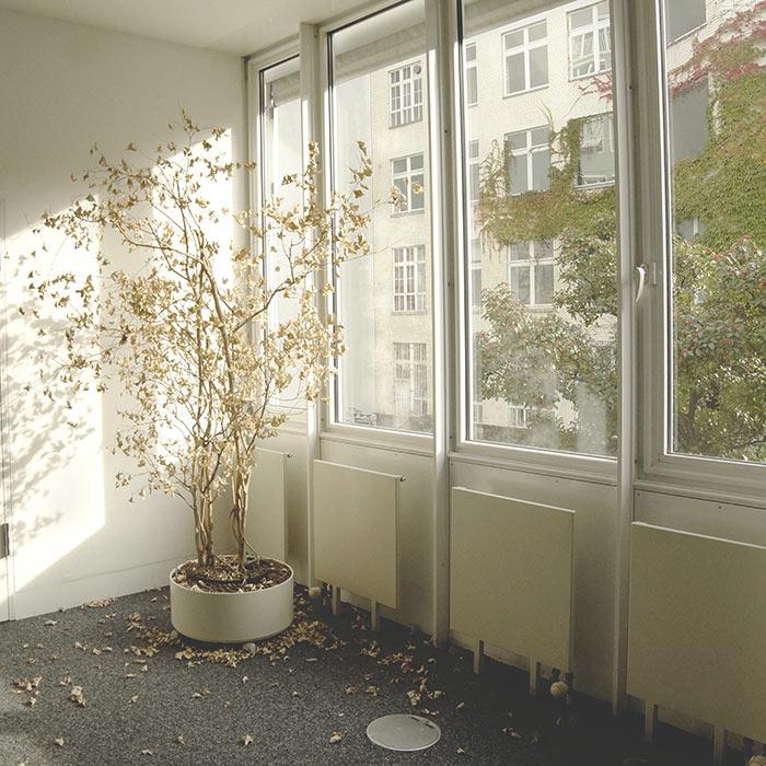 02-para-deixar-os-vidros-desta-janela-opacos-basta-apertar-um-botao