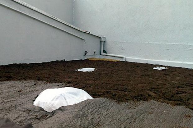 03-telhado-verde-telha-fibrocimento