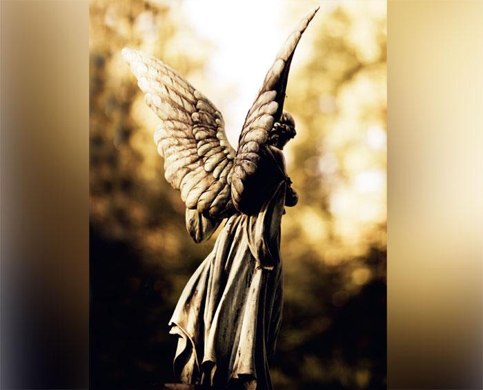 04-voce-tem-um-anjo-aprenda-a-conectar-se-com-ele