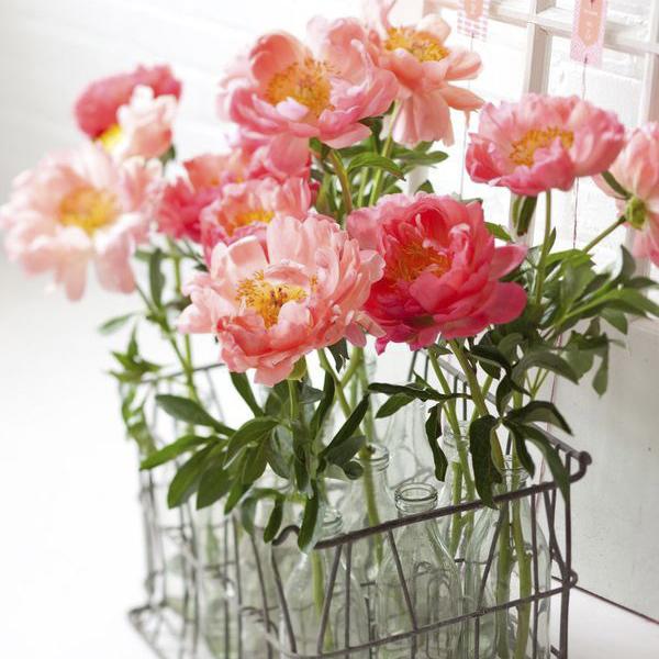 11-significado-das-flores-decoracao