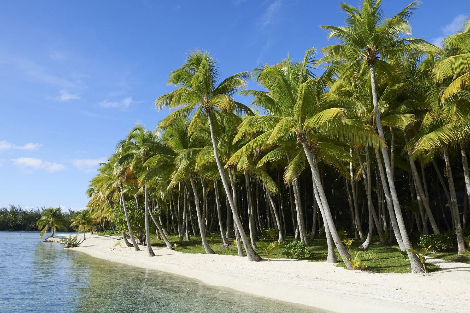 2-francois-nars-coloca-ilha-paradisiaca-na-costa-de-bora-bora-a-venda