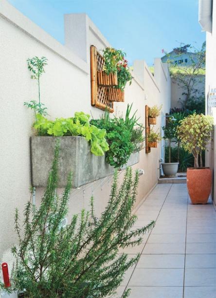 Três sugestões para montar a sua horta   CASA.COM.BR