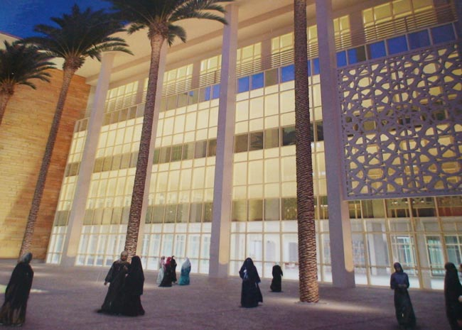 Serão 13 faculdades espalhadas pelos 3 milhões de m² de construção da Un...