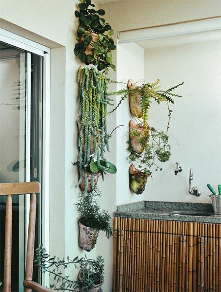 Suculentas pendentes em varanda