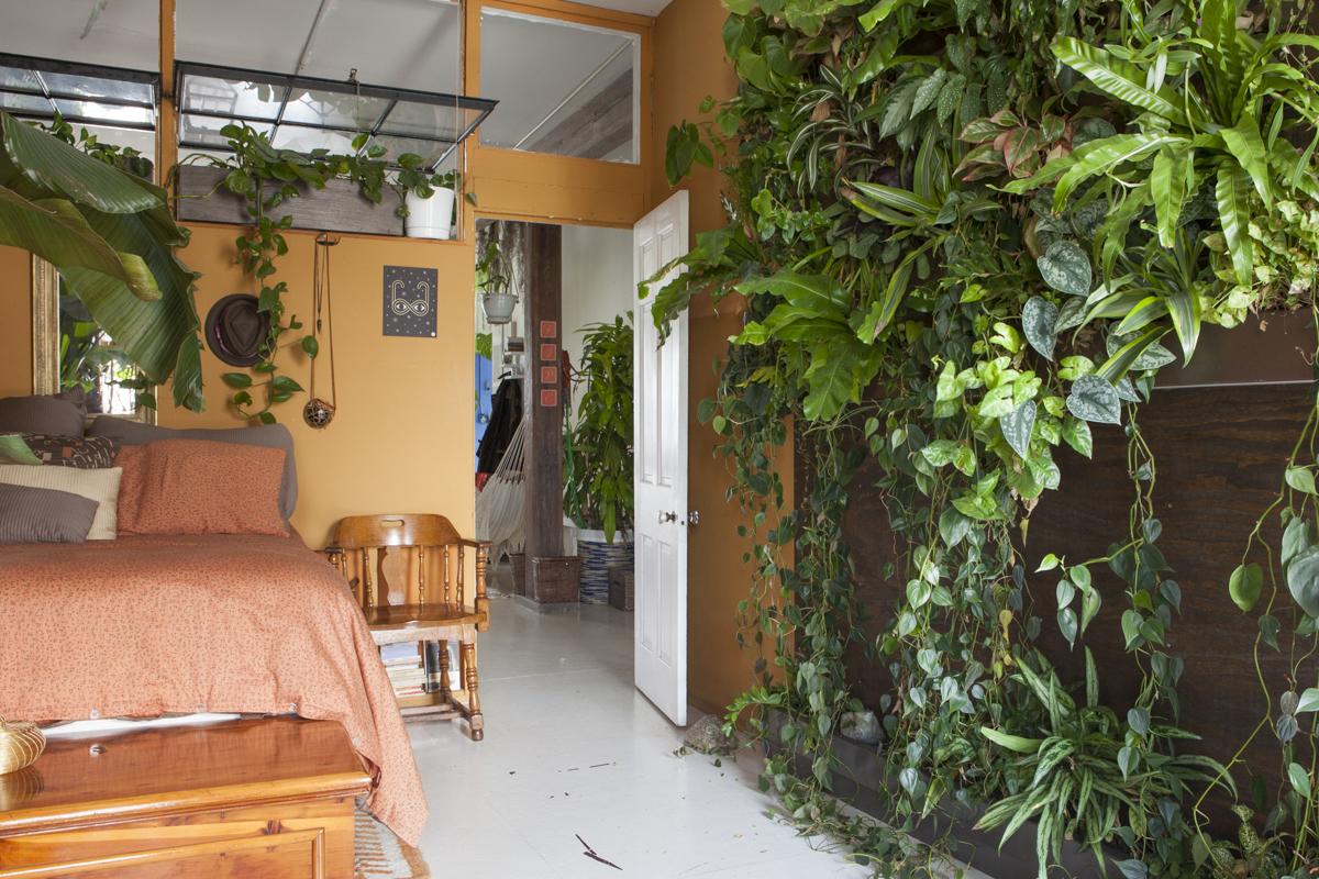 quarto-laranja-parede-verde-com-madeira