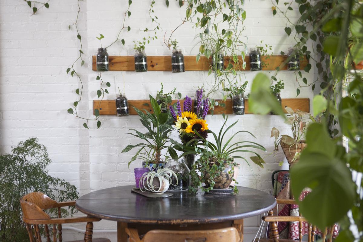 sala-de-estar-com-plantas-e-horta-de-ervas-vertical
