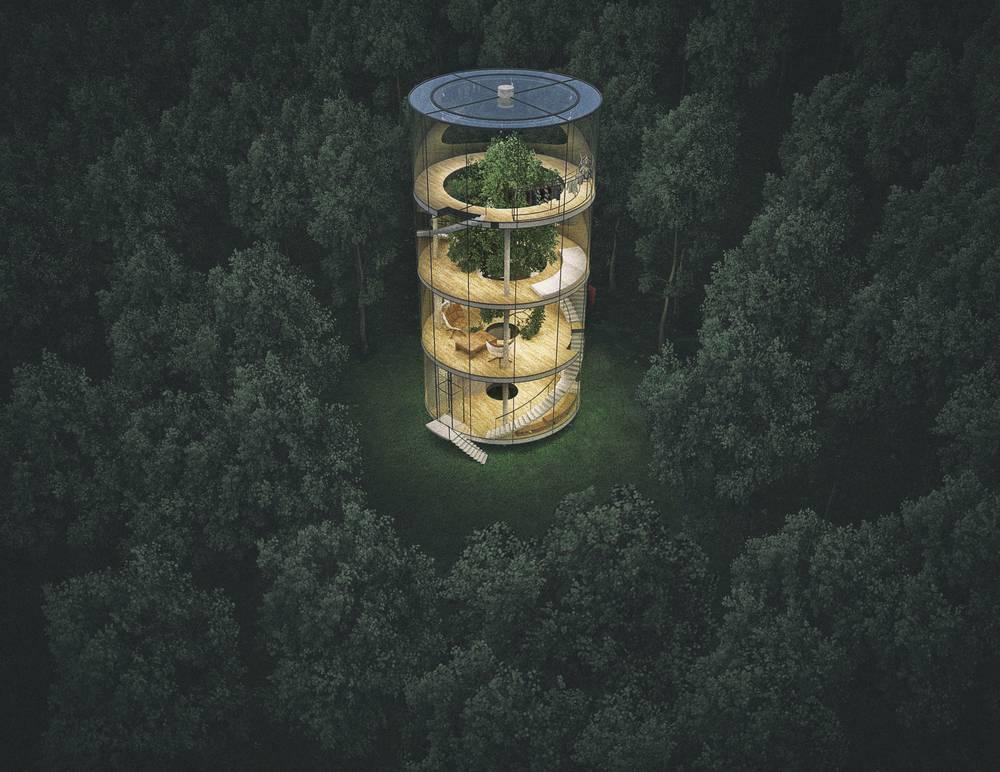 neste-projeto-a-casa-e-toda-construida-em-torno-de-uma-arvore