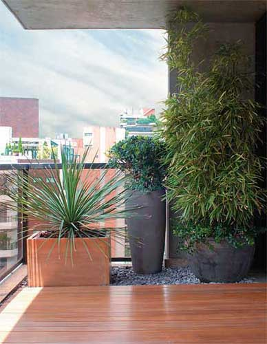 Clareamento – O clareamento dos pisos de madeira é feito com soluções à ...