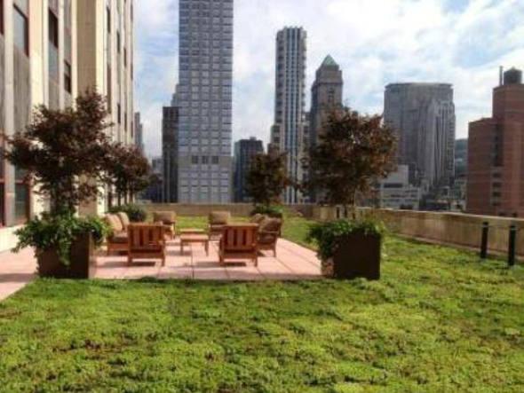 size_590_Telhado_verde_nasce_no_Empire_State_Building_em_NY