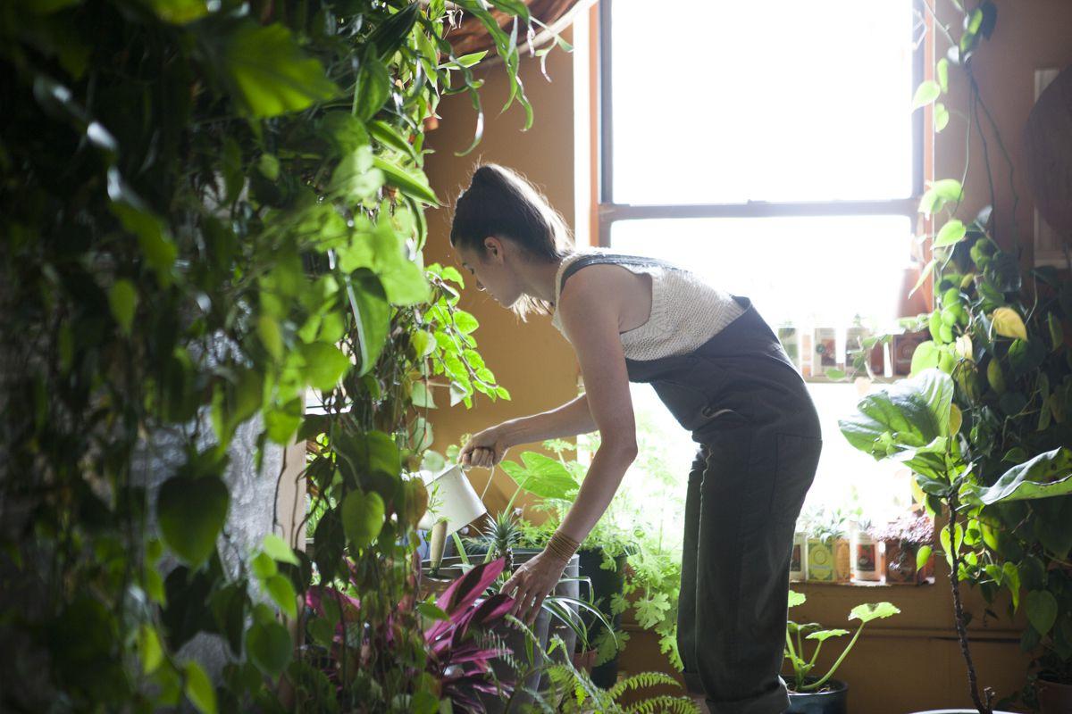 summer-regando-as-plantas