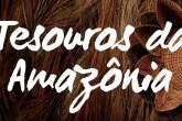 thumb-youtube-tesouros-da-amazonia