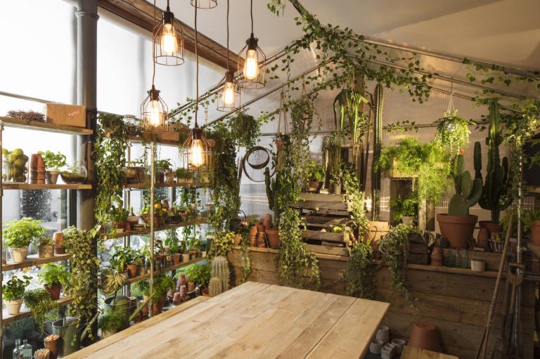 3-airbnb-e-pantone-fazem-parceria-e-criam-casa-com-lindos-jardins