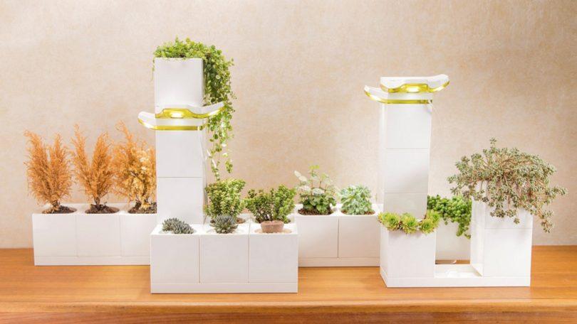 Jardim é feito com vasos encaixáveis tipo Lego