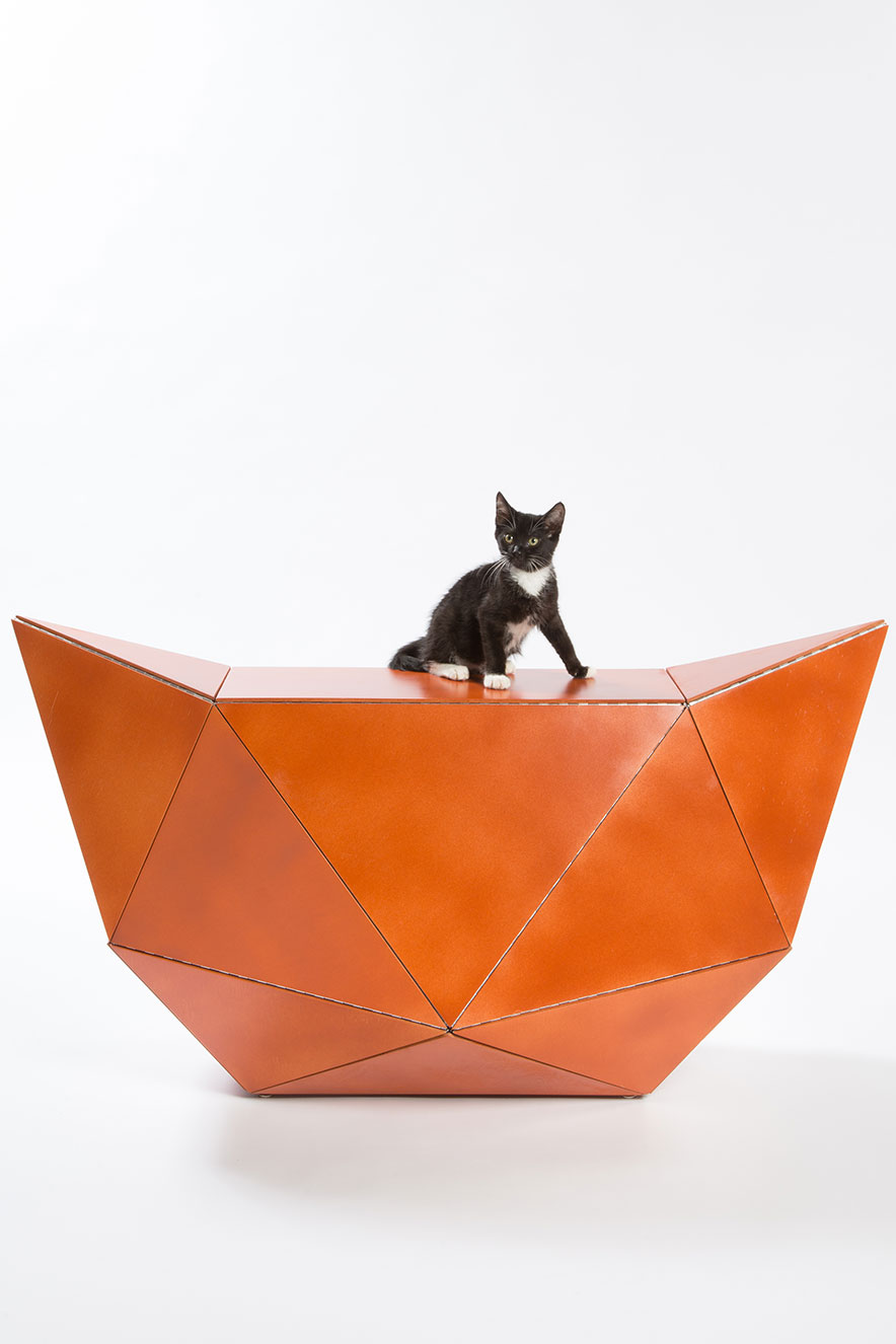 abrigos para gatos
