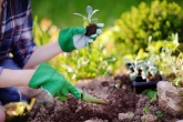 jardinagem saúde mentalo