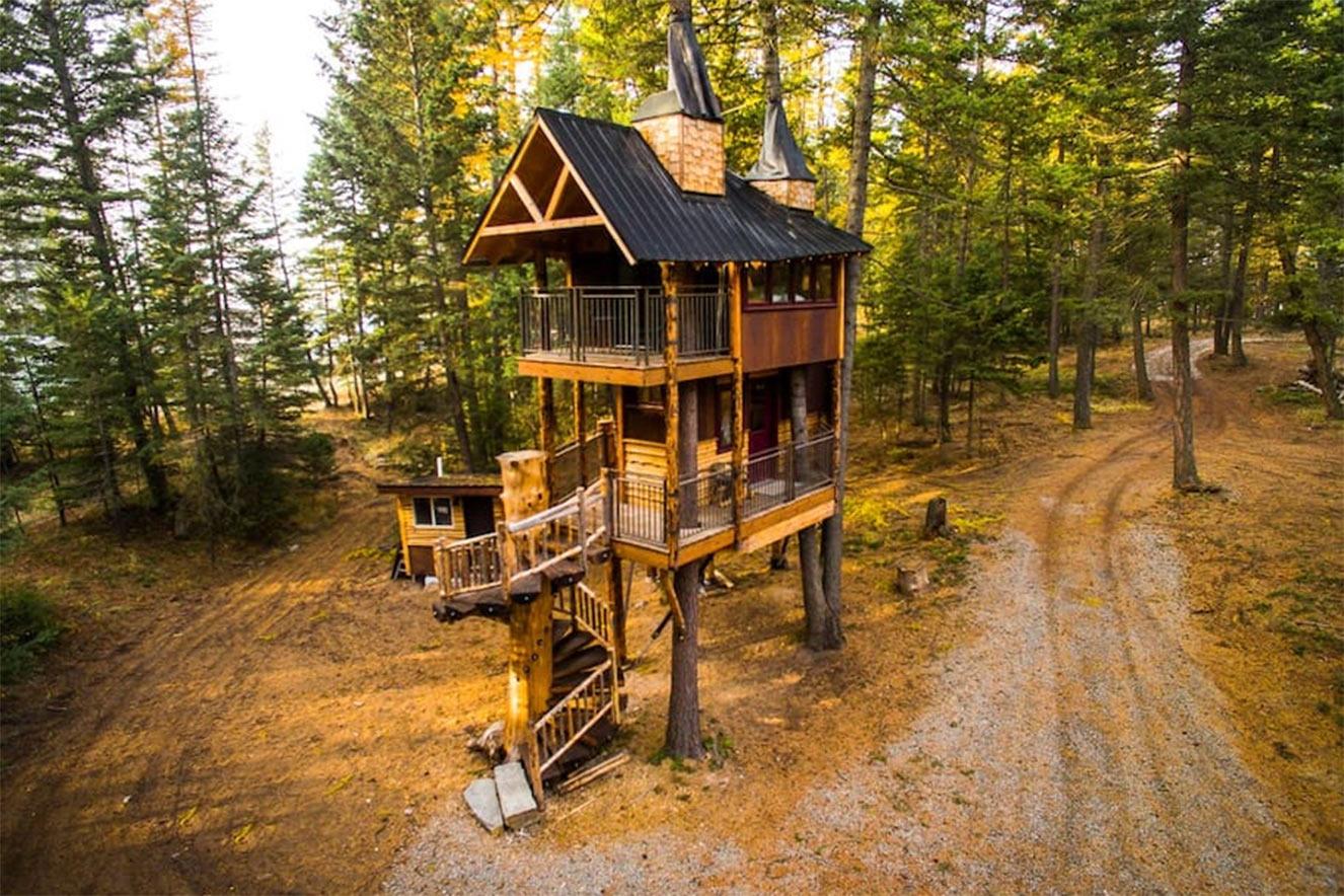 casa da árvore